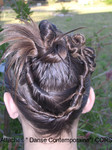 Evidence coiffure
